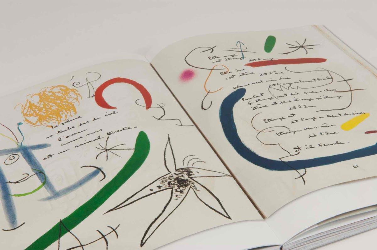 Livre institutionnel Fundació Joan Miró