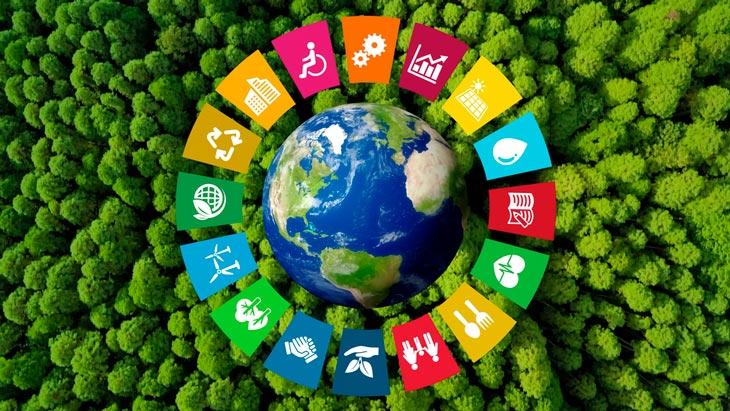 Actions des entreprises en faveur de la durabilité